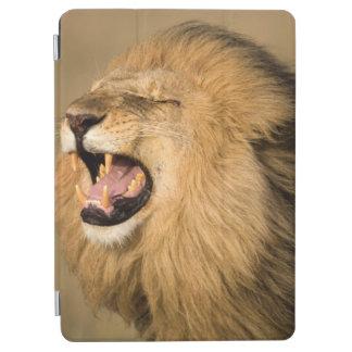 Male Lion Roaring iPad Air Cover