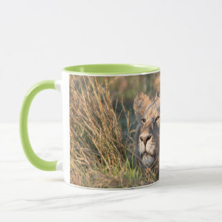 Male lion stalking in grass, head peeking out mug