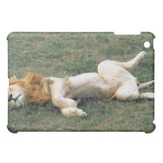 Male Lion Stretching iPad Mini Cover
