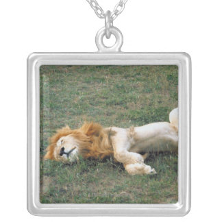 Male Lion Stretching Silver Plated Necklace