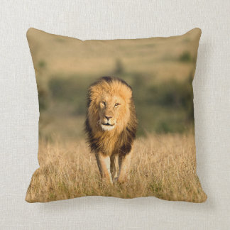 Male Lion Walking Cushion