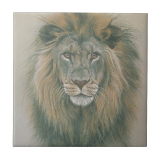 Male Lion With Beautiful Mane Tile