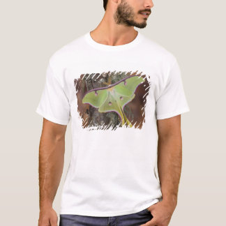 Male Luna Silk Moth of North American T-Shirt