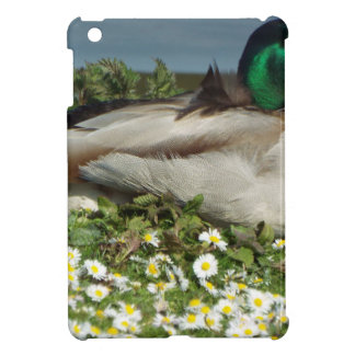 Male Mallard Duck Cover For The iPad Mini