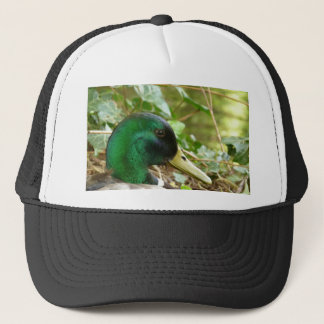 Male Mallard Duck Head Hat