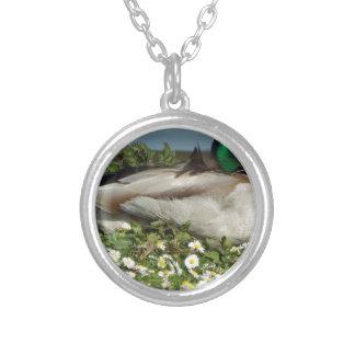 Male Mallard Duck Silver Plated Necklace