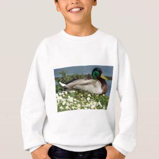 Male Mallard Duck Sweatshirt