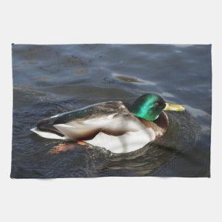 Male Mallard Duck Towel
