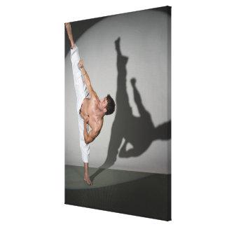 Male martial artist performing kick, studio shot canvas print