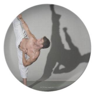 Male martial artist performing kick, studio shot plate