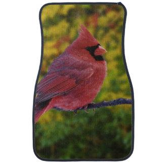 Male Northern Cardinal in autumn, Cardinalis Car Mat