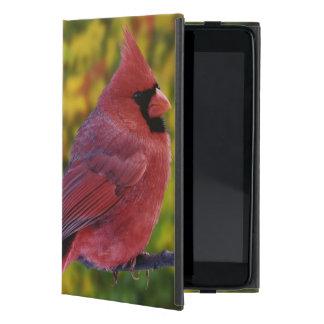 Male Northern Cardinal in autumn, Cardinalis Covers For iPad Mini