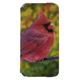 Male Northern Cardinal in autumn, Cardinalis Incipio Watson™ iPhone 6 Wallet Case