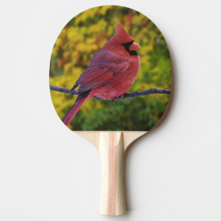 Male Northern Cardinal in autumn, Cardinalis Ping Pong Paddle