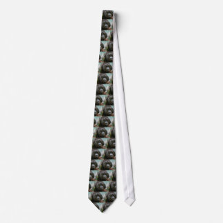 male orangutan tie
