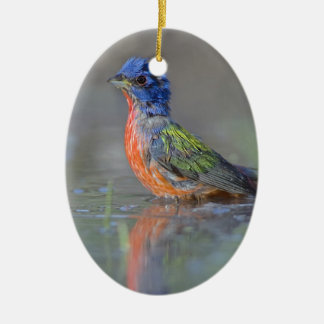 Male Painted Bunting Christmas Ornament