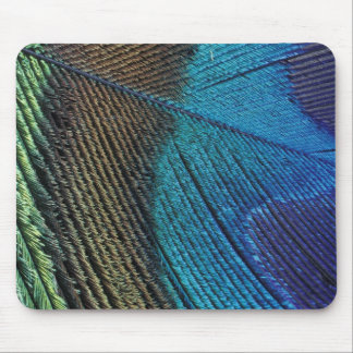 Male peacock feather detail mouse mat