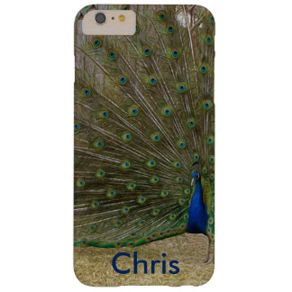 Male Peacock Strut Barely There iPhone 6 Plus Case