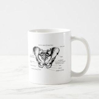 Male Pelvis Details Coffee Mug