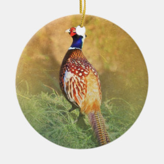 Male Pheasant Ornament