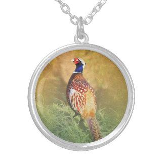 Male Pheasant Pendant