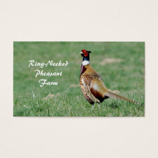 Male ring necked pheasant business card