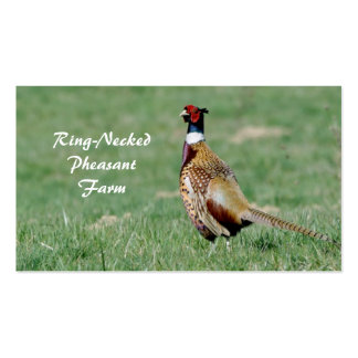 Male ring necked pheasant pack of standard business cards