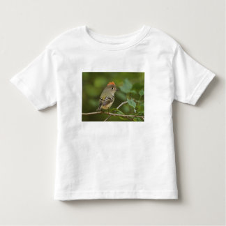 Male Ruby-crowned Kinglet, Regulus calendula Toddler T-Shirt