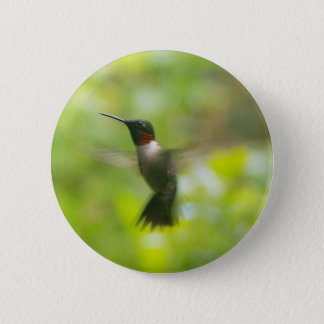 Male Ruby Throat Hummingbird Button
