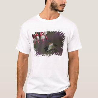 Male Ruby-throated Hummingbird in flight. T-Shirt
