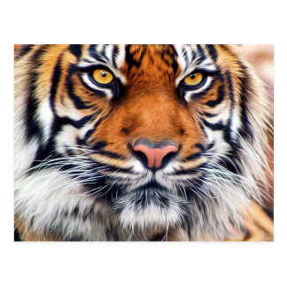 Male Siberian Tiger Paint Photograph Postcard