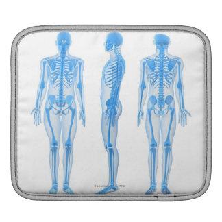 Male Skeleton iPad Sleeve