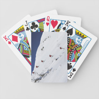 Male Skier Bicycle Playing Cards