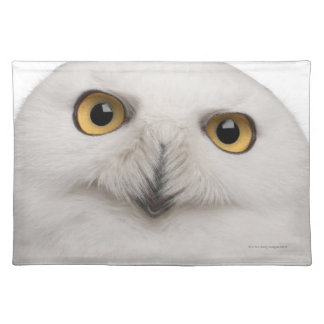 Male Snowy Owl (Bubo scandiacus) is a large owl Placemat