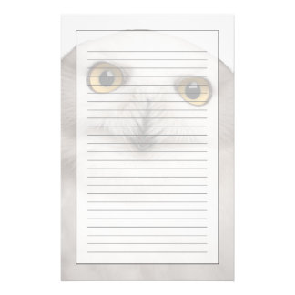 Male Snowy Owl (Bubo scandiacus) is a large owl Stationery