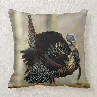 Male turkey strutting, Illinois Cushion