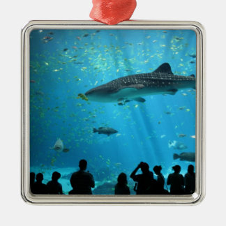 Male Whale Shark Christmas Ornament