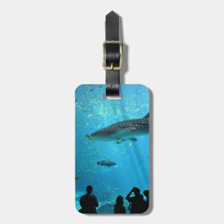 Male Whale Shark Luggage Tag