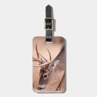 Male whitetail deer grazing luggage tag