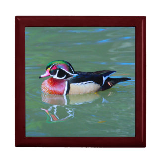 Male Wood Duck on pond Trinket Boxes