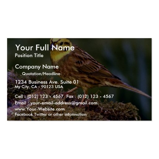 Male yellowhammer business cards