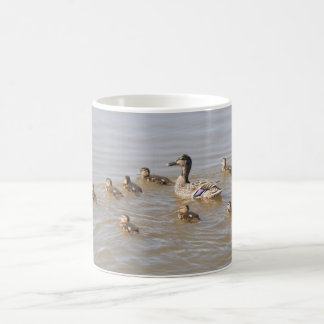 Mallard and Ducklings Coffee Mug