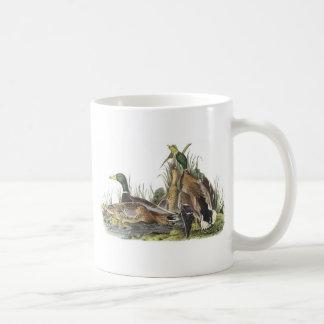 Mallard by Audubon Mugs