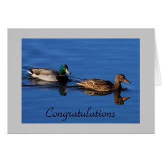 Mallard Couple Card