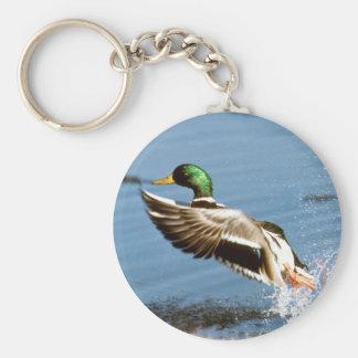 Mallard Drake Duck Key Ring