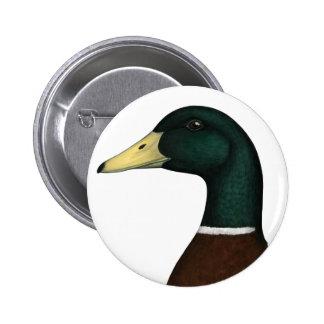 Mallard Drake Head 6 Cm Round Badge