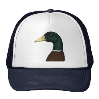 Mallard Drake Head Cap