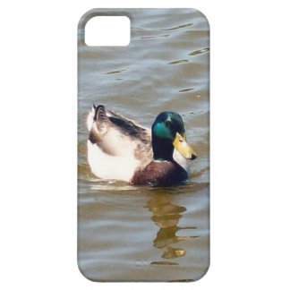 Mallard Duck Barely There iPhone 5/5S Case