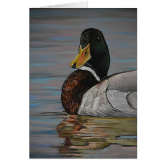 Mallard Duck Bird Art Greeting Card