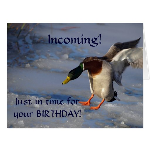 Funny Duck Birthday Cards, Photo Card Templates